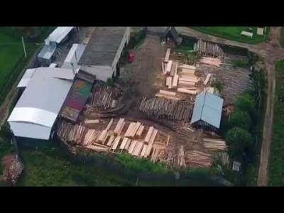Вбудована мініатюра для На Закарпатті СБУ блокувала масштабне розкрадання деревини з Лазещинського лісництва